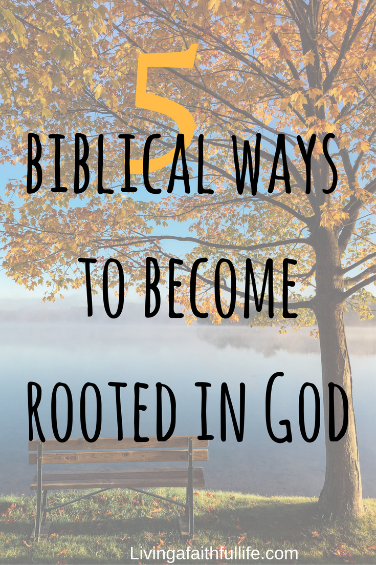 5 biblical ways to become rooted in God